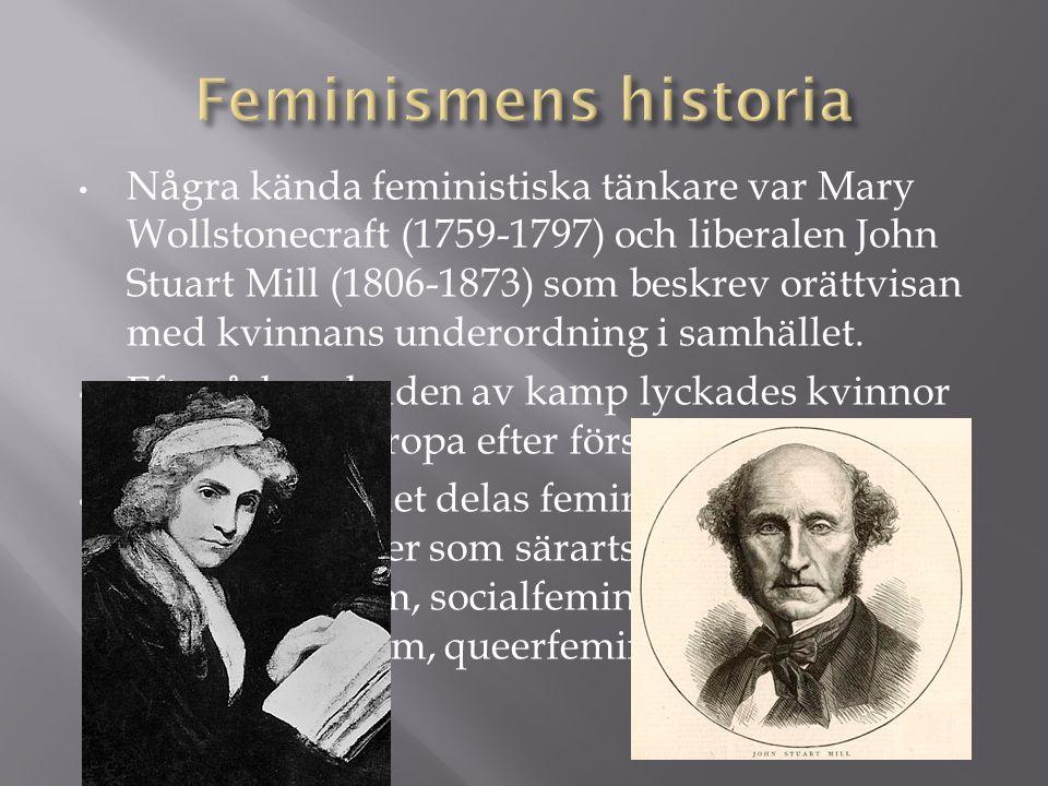 Feminismens historia