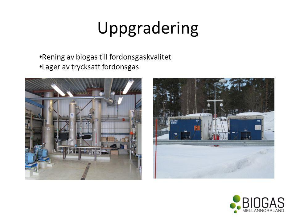 Uppgradering Rening av biogas till fordonsgaskvalitet
