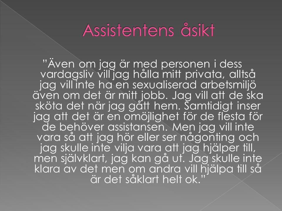 Assistentens åsikt