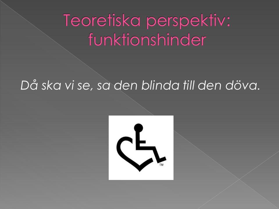 Teoretiska perspektiv: funktionshinder