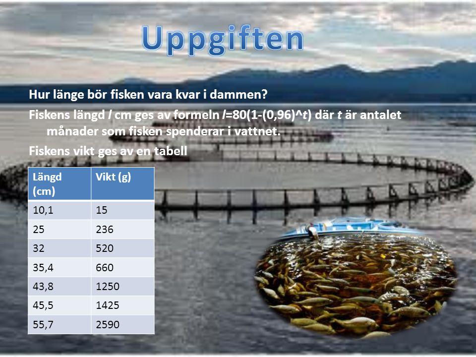 Uppgiften Hur länge bör fisken vara kvar i dammen