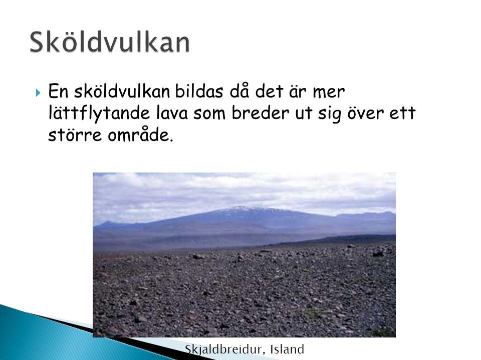 Sköldvulkan En sköldvulkan bildas då det är mer lättflytande lava som breder ut sig över ett större område.