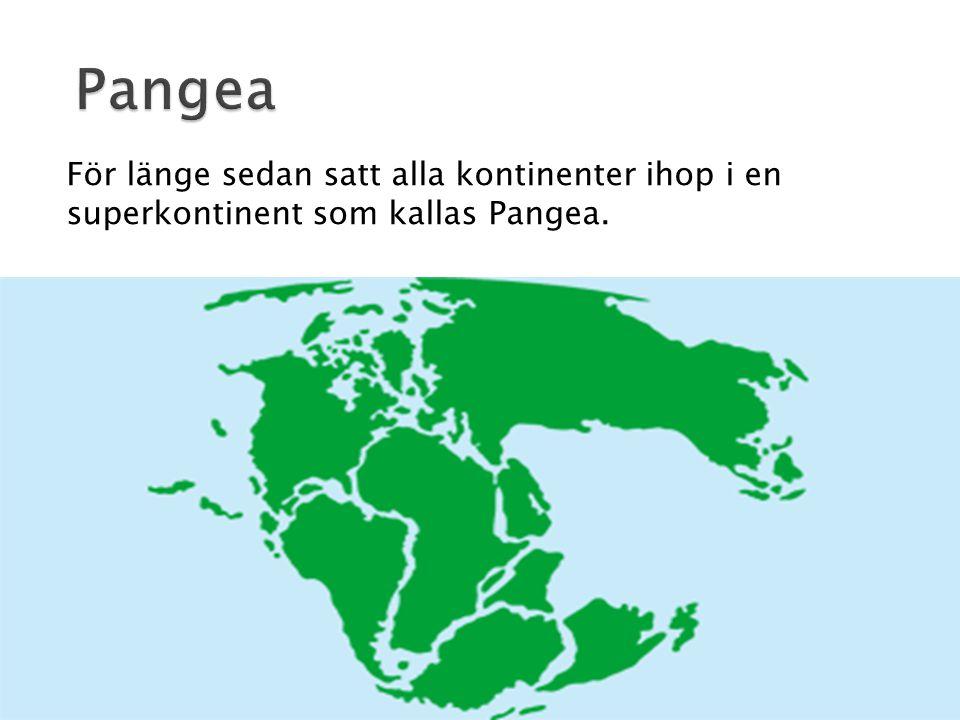 Pangea För länge sedan satt alla kontinenter ihop i en superkontinent som kallas Pangea.