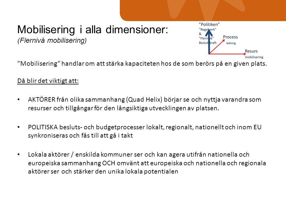 Mobilisering i alla dimensioner: (Flernivå mobilisering)