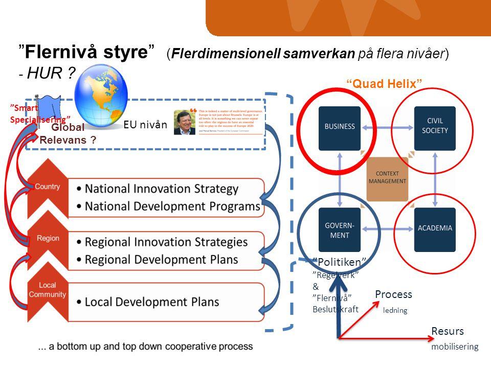 Flernivå styre (Flerdimensionell samverkan på flera nivåer)