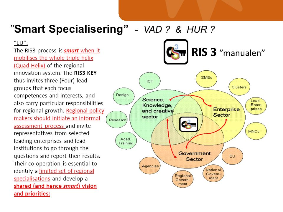 RIS 3 manualen Smart Specialisering - VAD & HUR EU :
