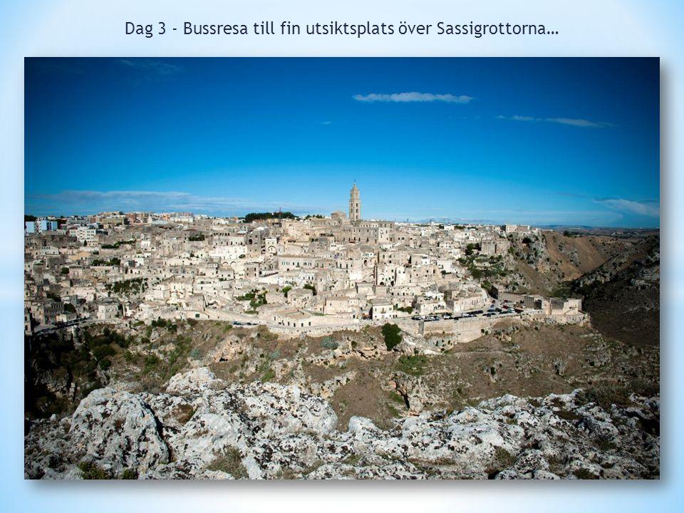 Dag 3 - Bussresa till fin utsiktsplats över Sassigrottorna…
