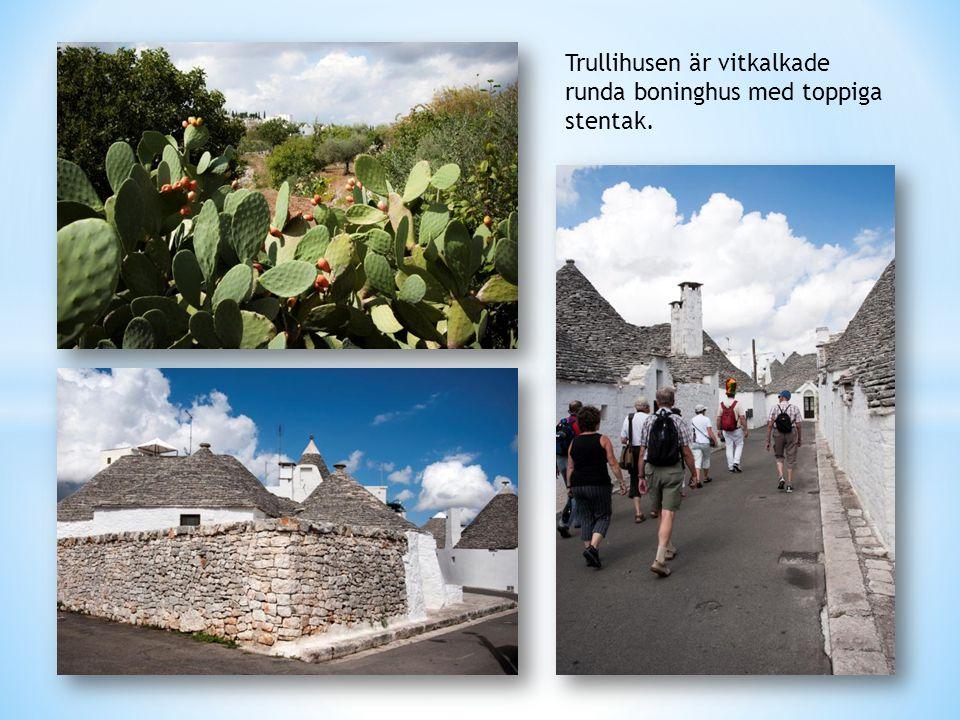 Trullihusen är vitkalkade runda boninghus med toppiga stentak.