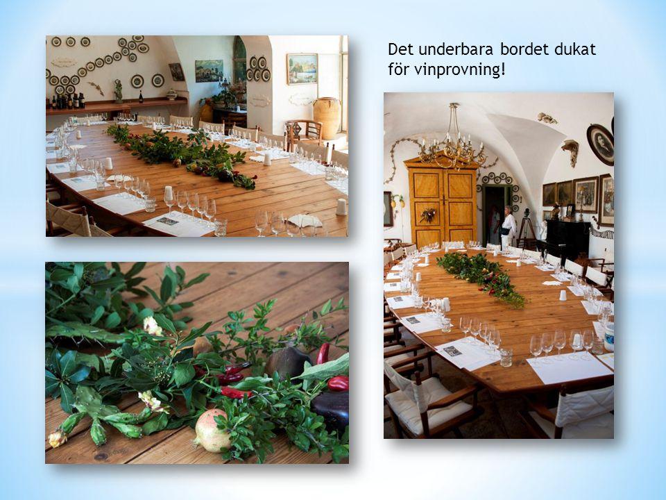 Det underbara bordet dukat för vinprovning!