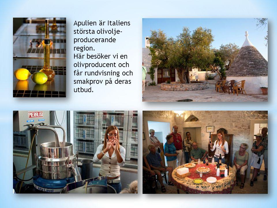 Apulien är Italiens största olivolje-producerande region.