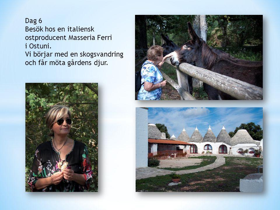 Dag 6 Besök hos en italiensk ostproducent Masseria Ferri