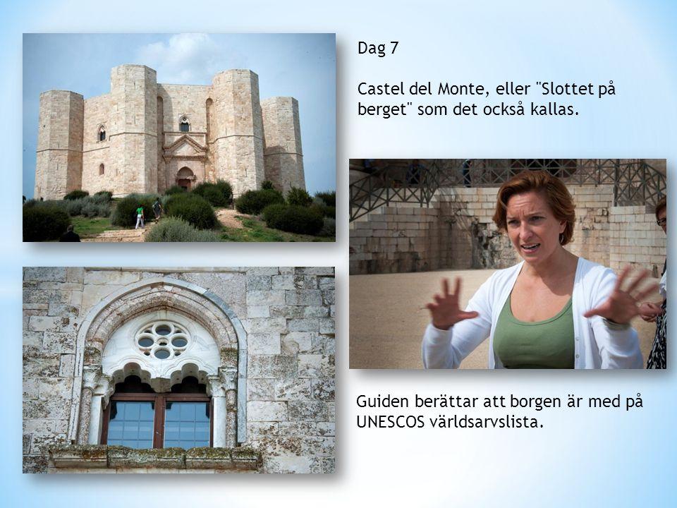 Dag 7 Castel del Monte, eller Slottet på berget som det också kallas.