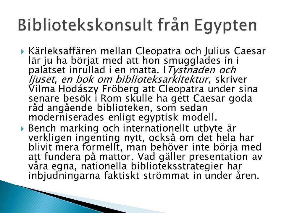 Bibliotekskonsult från Egypten