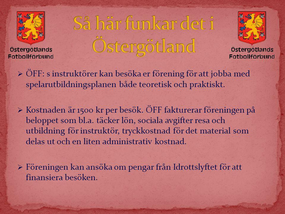 Så här funkar det i Östergötland