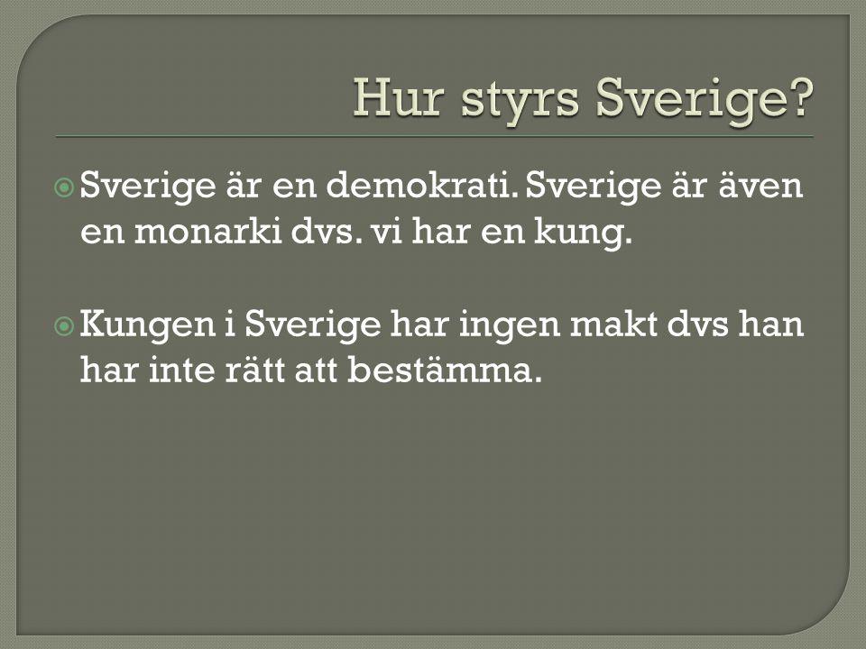 Hur styrs Sverige Sverige är en demokrati. Sverige är även en monarki dvs. vi har en kung.