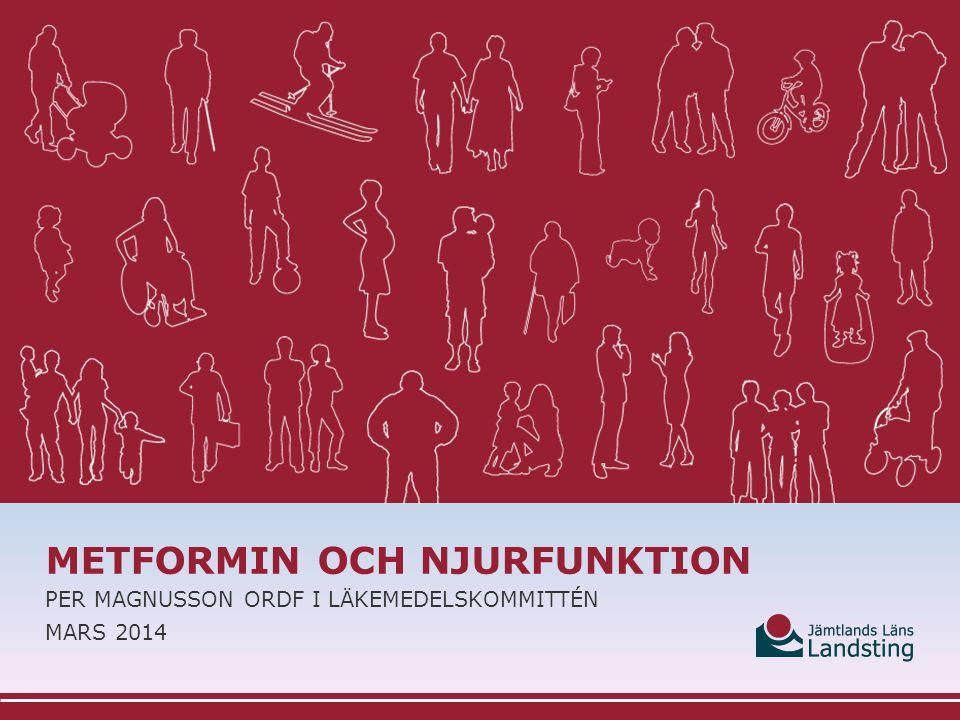 Metformin och njurfunktion