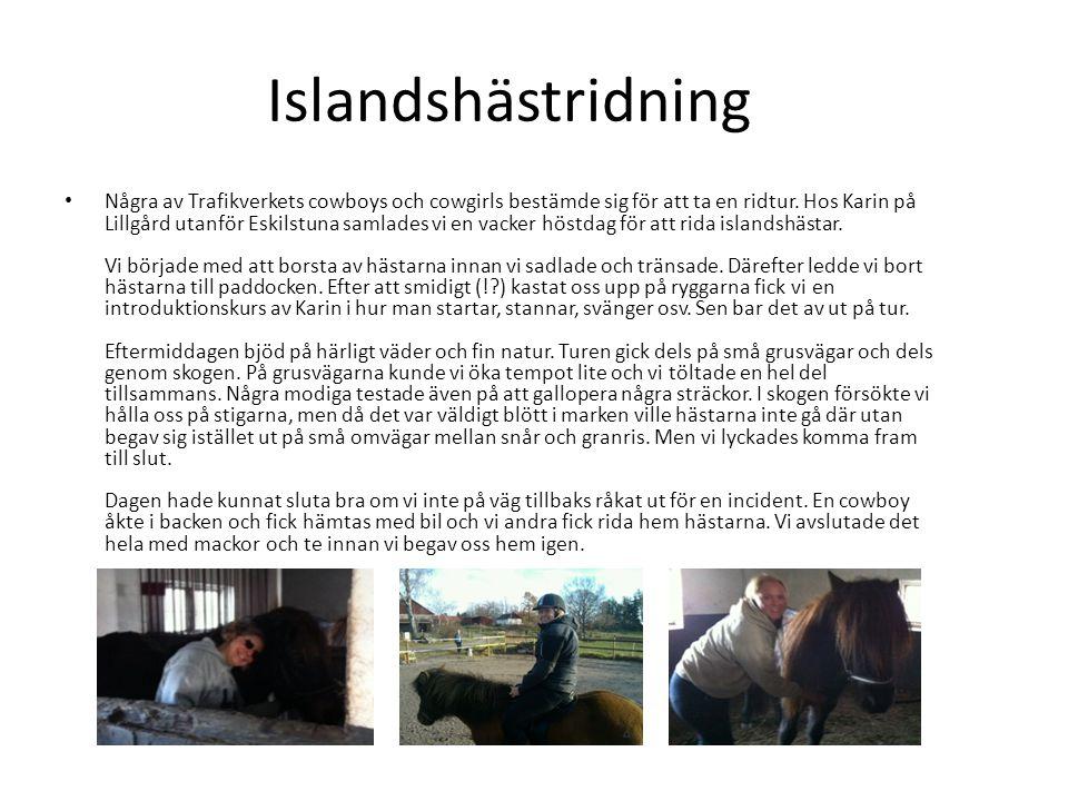 Islandshästridning