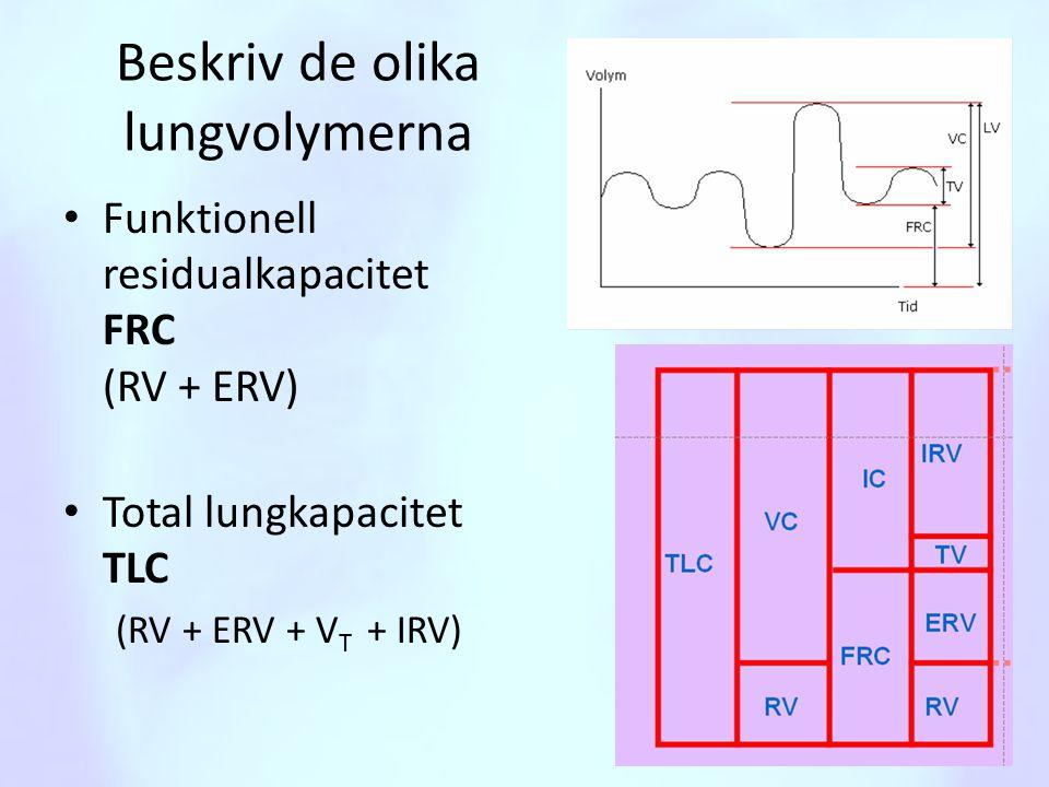 Beskriv de olika lungvolymerna
