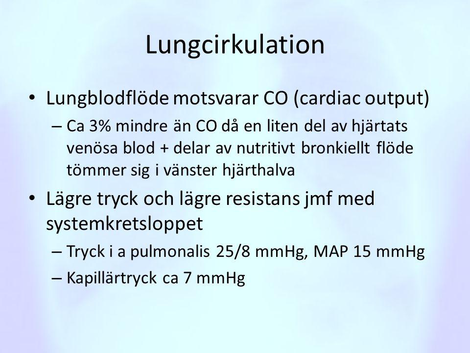 Lungcirkulation Lungblodflöde motsvarar CO (cardiac output)