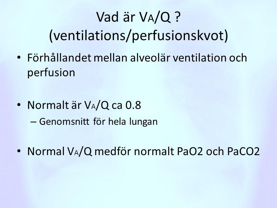 Vad är VA/Q (ventilations/perfusionskvot)