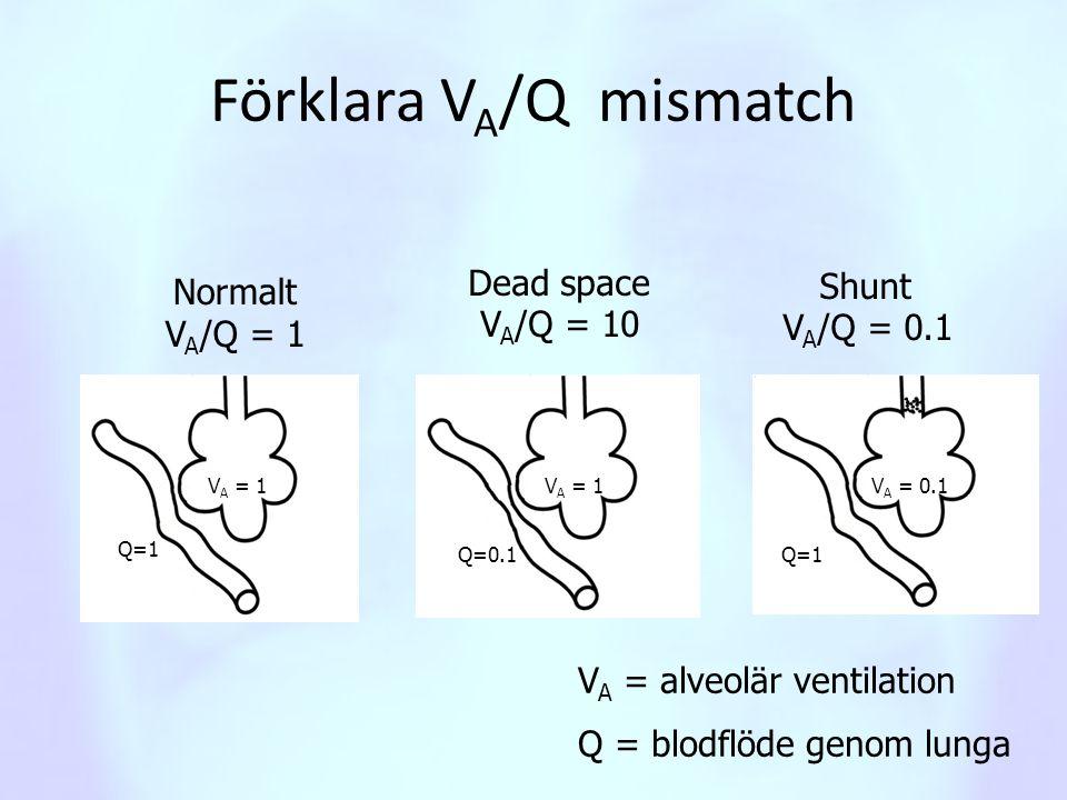 Förklara VA/Q mismatch