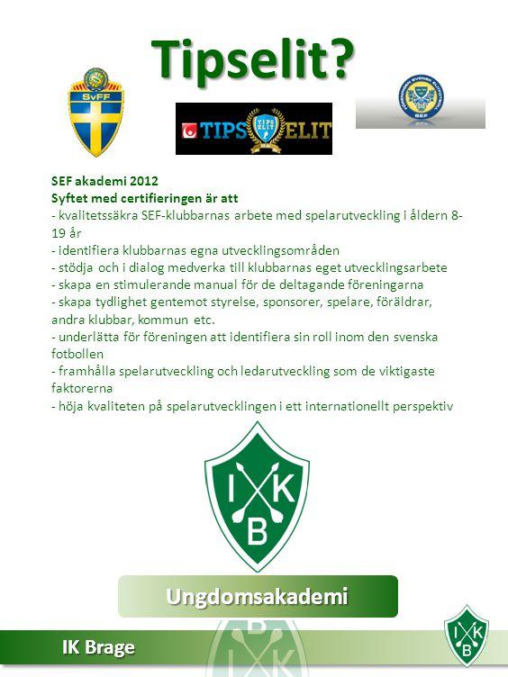 Tipselit Ungdomsakademi SEF akademi 2012