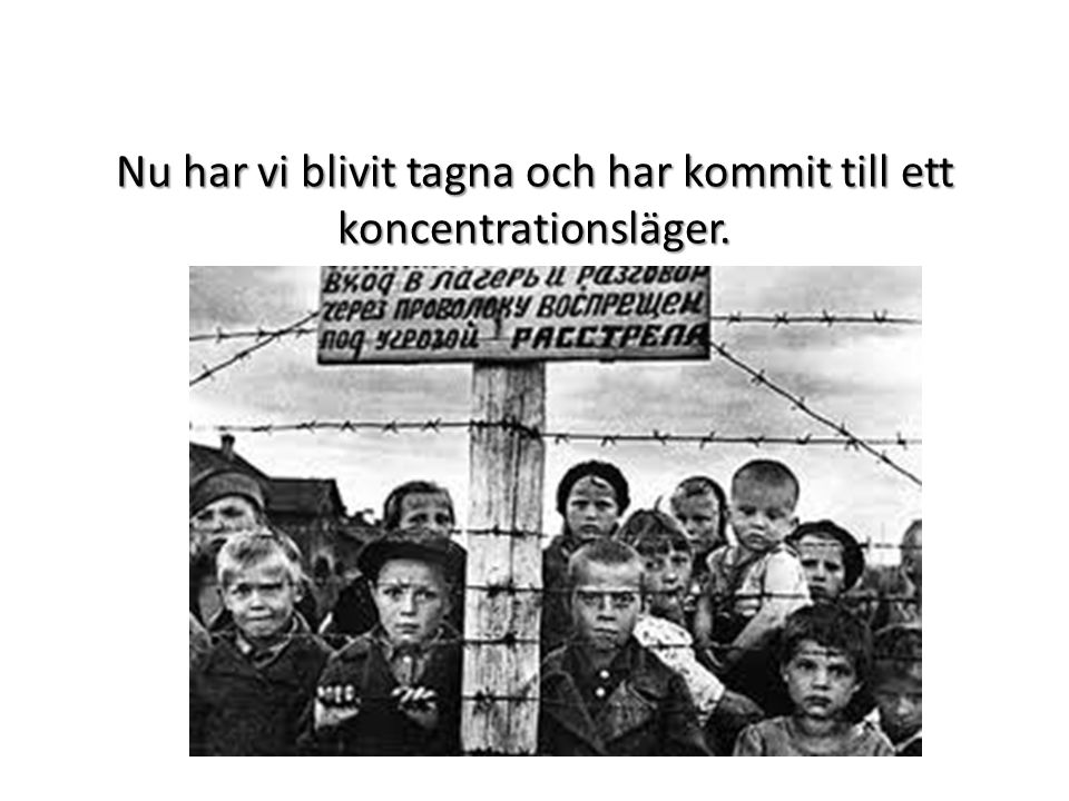 Nu har vi blivit tagna och har kommit till ett koncentrationsläger.