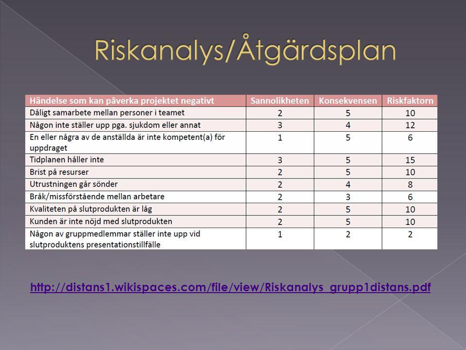 Riskanalys/Åtgärdsplan