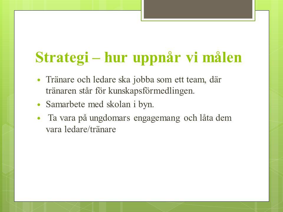 Strategi – hur uppnår vi målen
