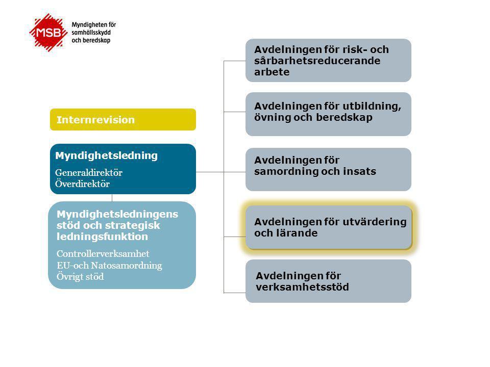 Avdelningen för risk- och sårbarhetsreducerande arbete