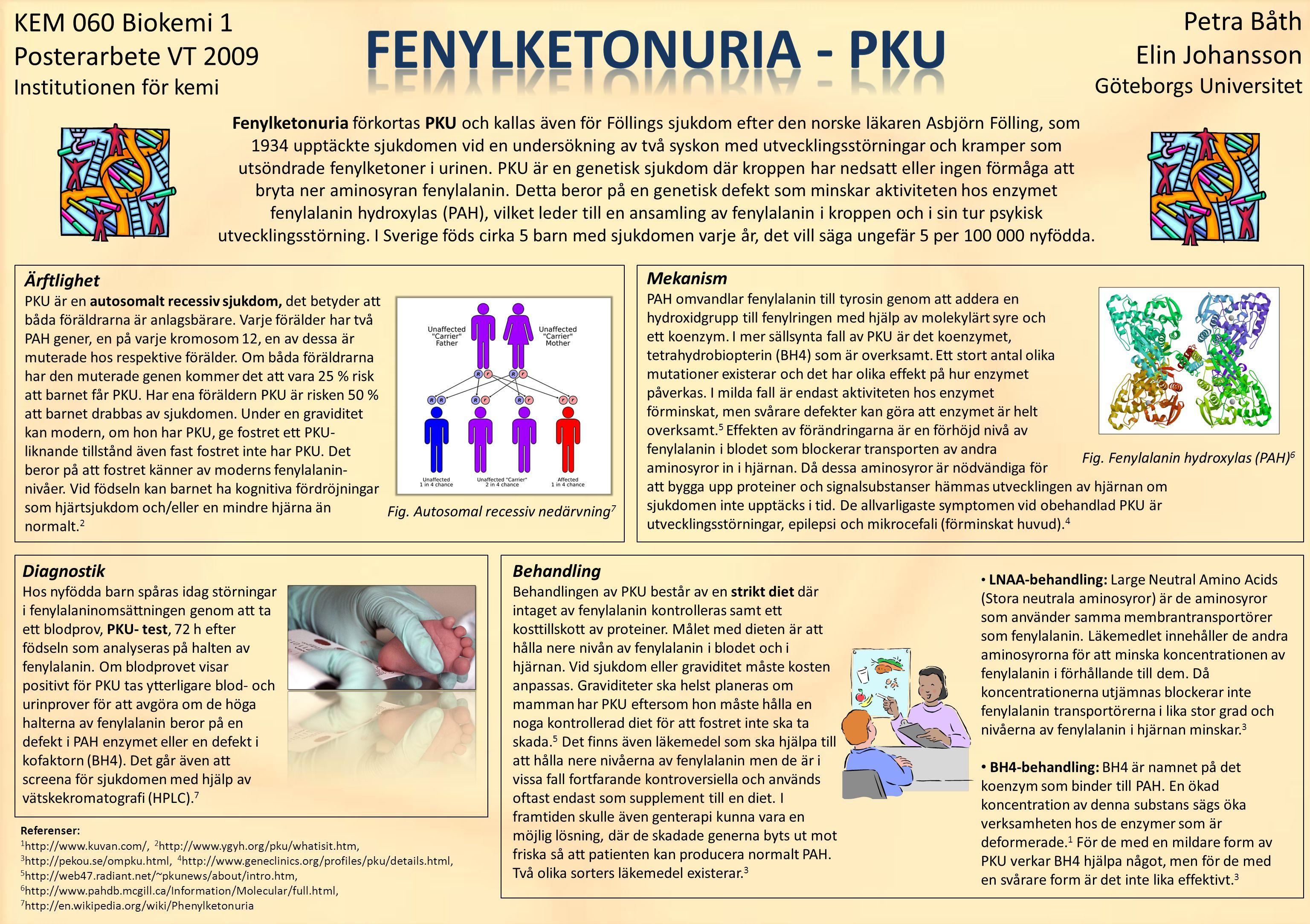 FENYLKETONURIA - PKU Petra Båth KEM 060 Biokemi 1 Elin Johansson
