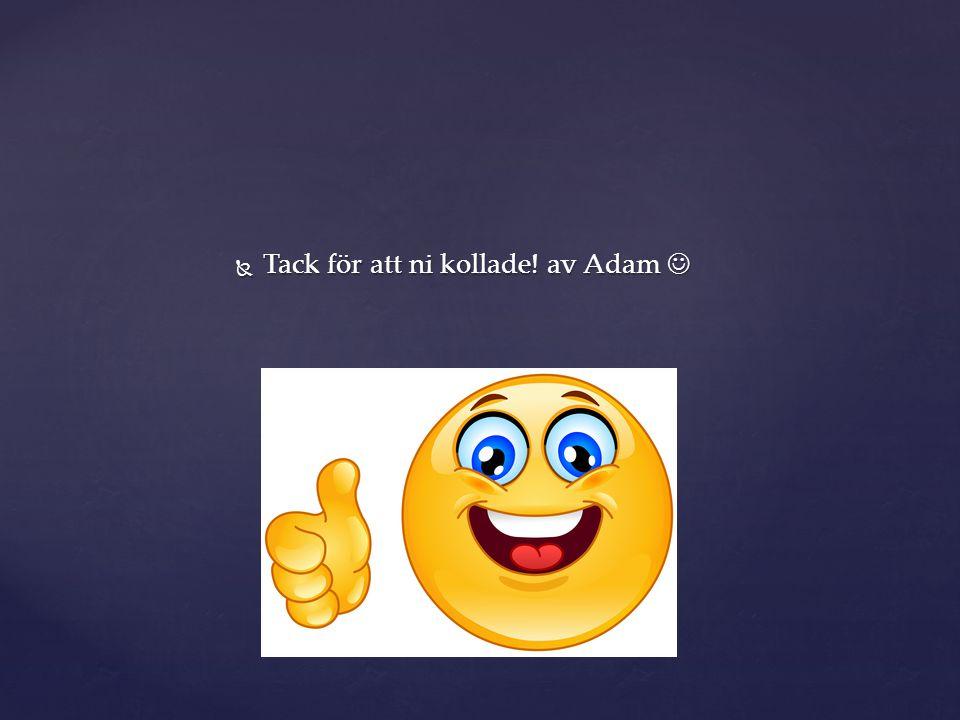 Tack för att ni kollade! av Adam 