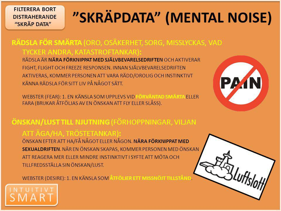 SKRÄPDATA (MENTAL NOISE)