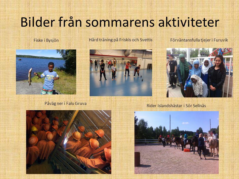 Bilder från sommarens aktiviteter