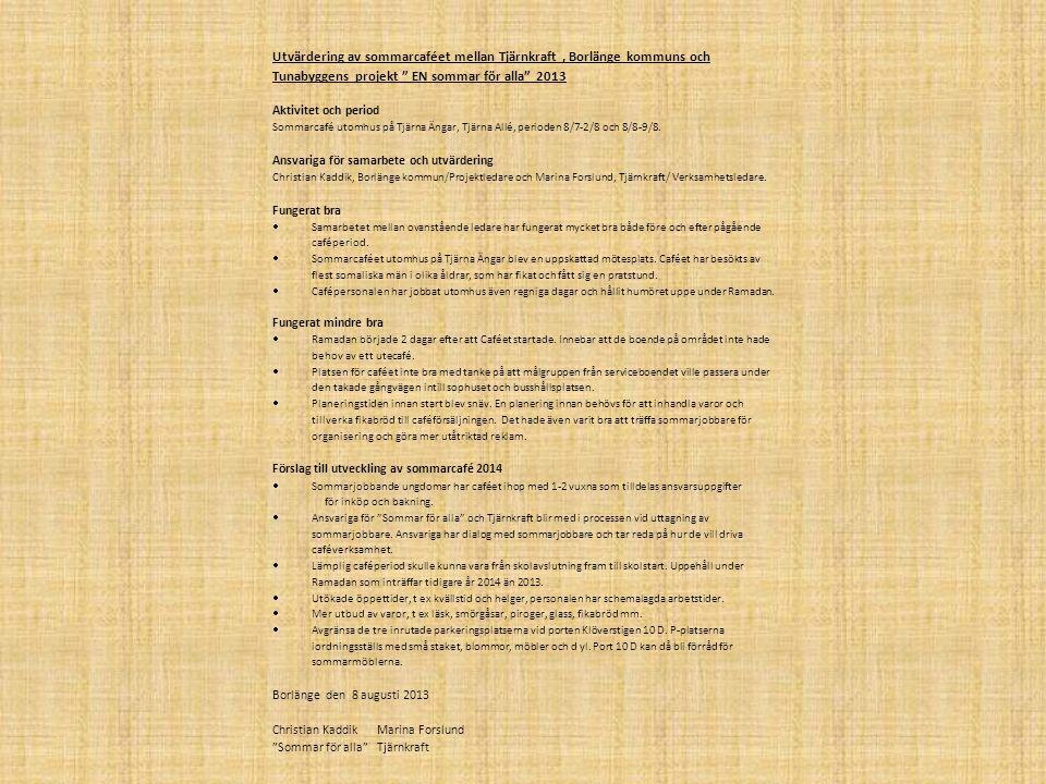Utvärdering av sommarcaféet mellan Tjärnkraft , Borlänge kommuns och Tunabyggens projekt EN sommar för alla 2013