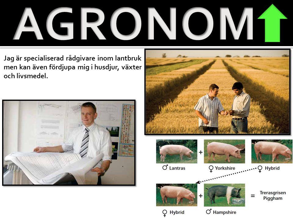 AGRONOM Jag är specialiserad rådgivare inom lantbruk men kan även fördjupa mig i husdjur, växter och livsmedel.