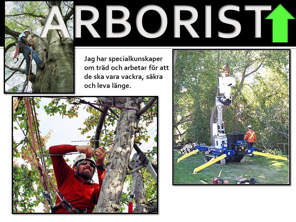 ARBORIST Jag har specialkunskaper om träd och arbetar för att