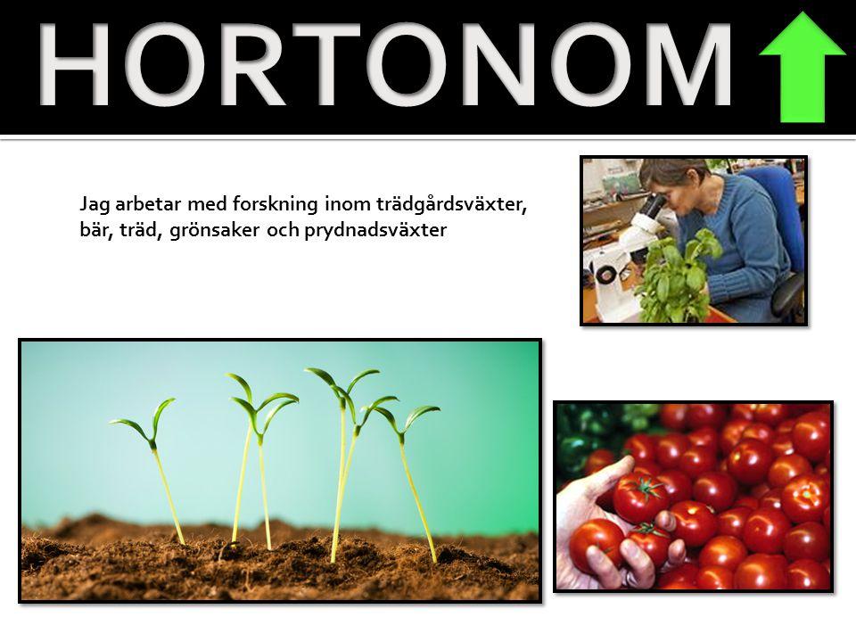 HORTONOM Jag arbetar med forskning inom trädgårdsväxter, bär, träd, grönsaker och prydnadsväxter