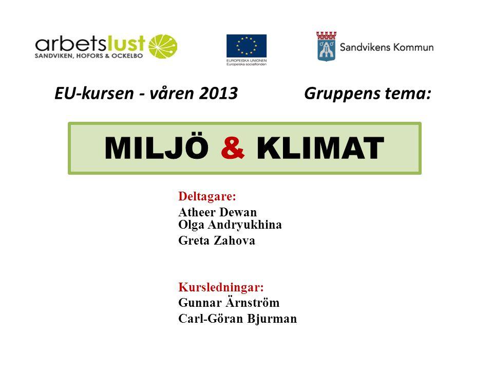 EU-kursen - våren 2013 Gruppens tema: