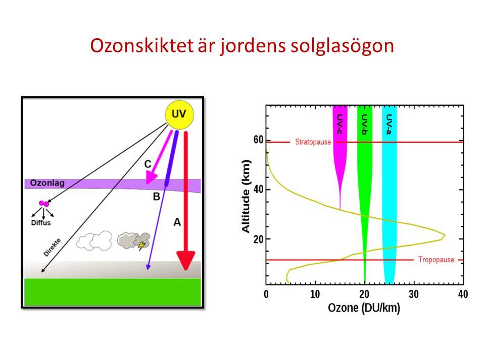 Ozonskiktet är jordens solglasögon