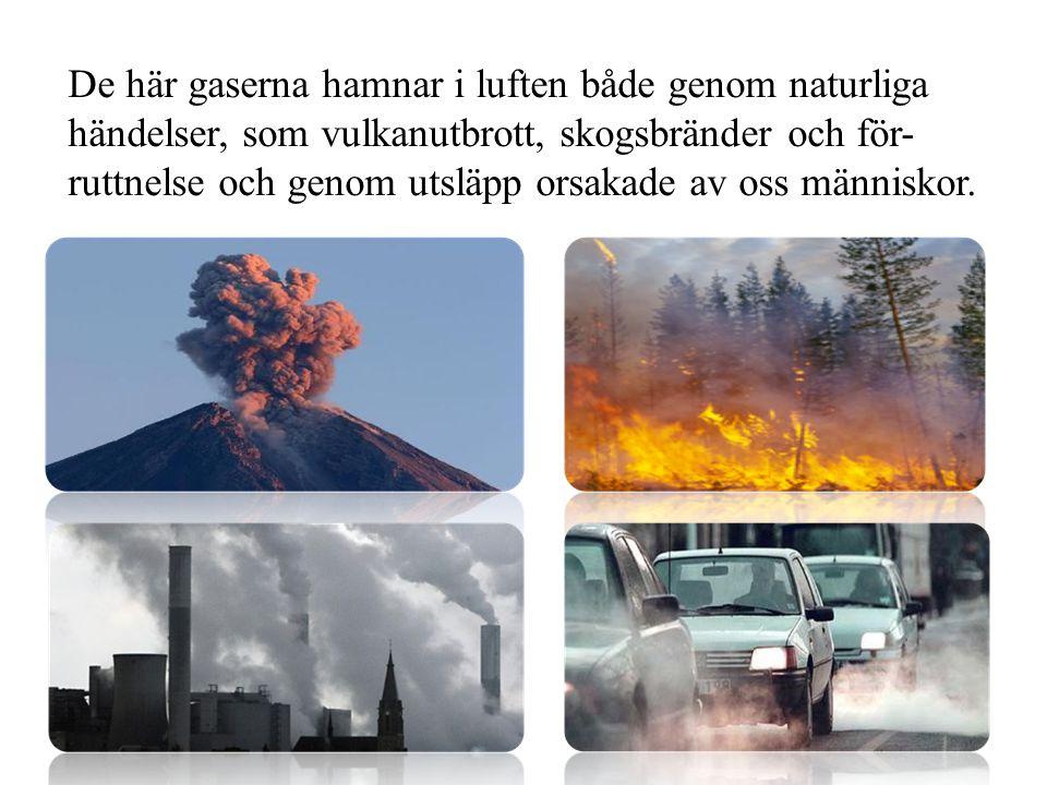 De här gaserna hamnar i luften både genom naturliga händelser, som vulkanutbrott, skogsbränder och för-ruttnelse och genom utsläpp orsakade av oss människor.