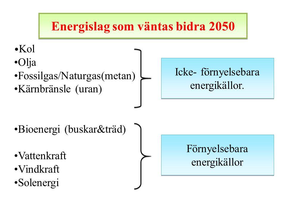 Energislag som väntas bidra 2050