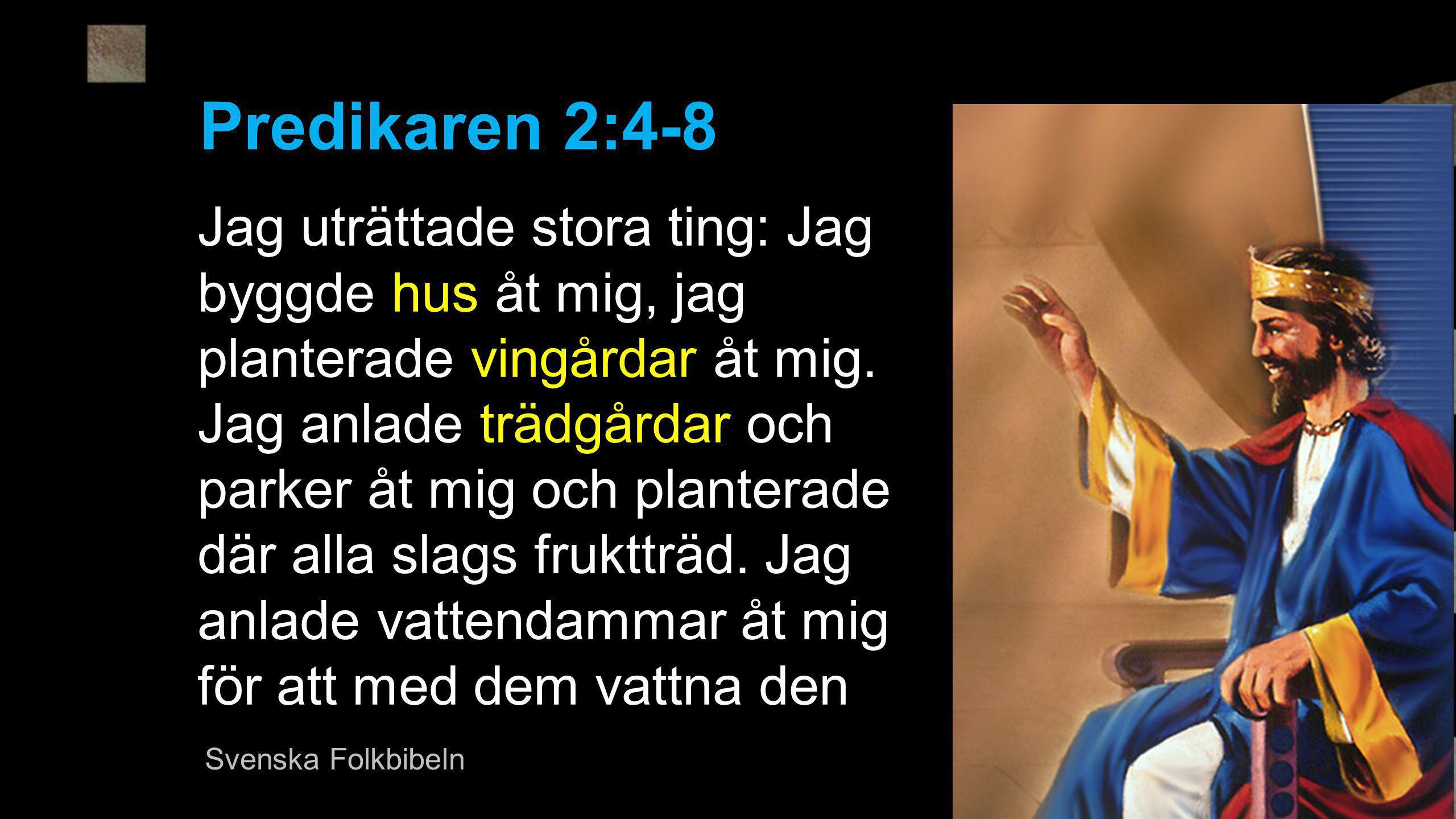Predikaren 2:4-8