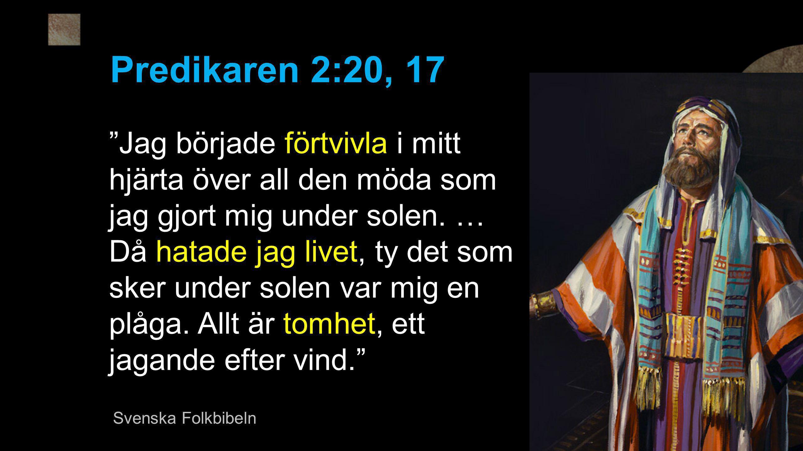 Predikaren 2:20, 17