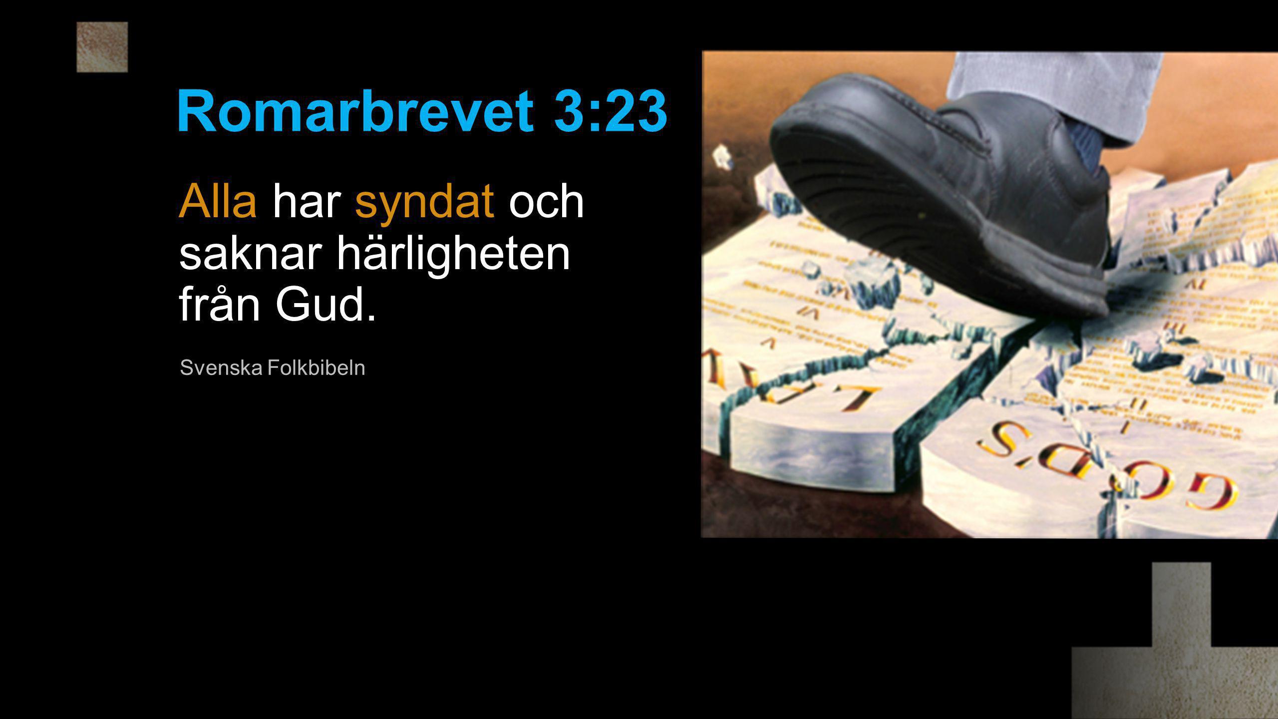 Romarbrevet 3:23 Alla har syndat och saknar härligheten från Gud.