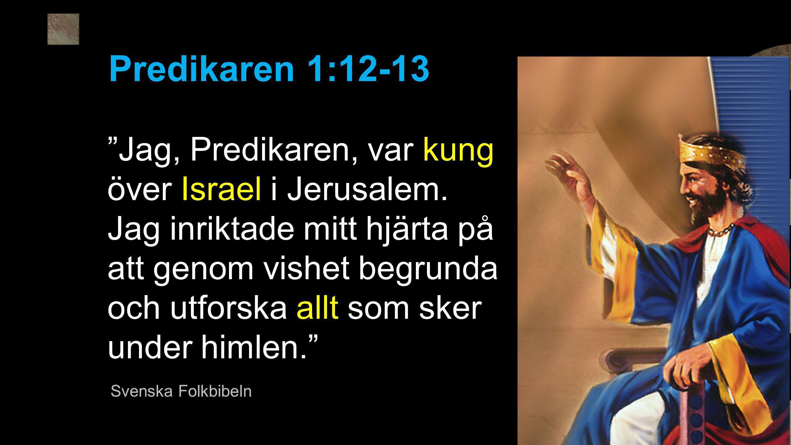 Predikaren 1:12-13