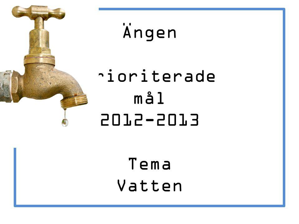 Ängen Prioriterade mål 2012-2013 Tema Vatten