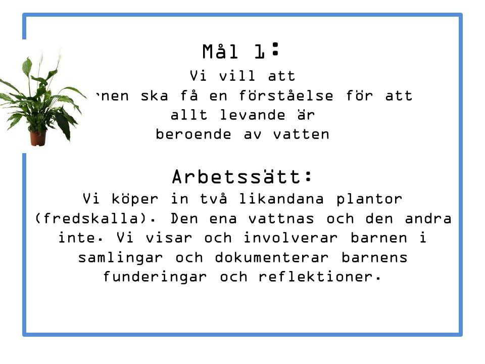 Mål 1: Vi vill att barnen ska få en förståelse för att allt levande är beroende av vatten Arbetssätt: Vi köper in två likandana plantor (fredskalla).