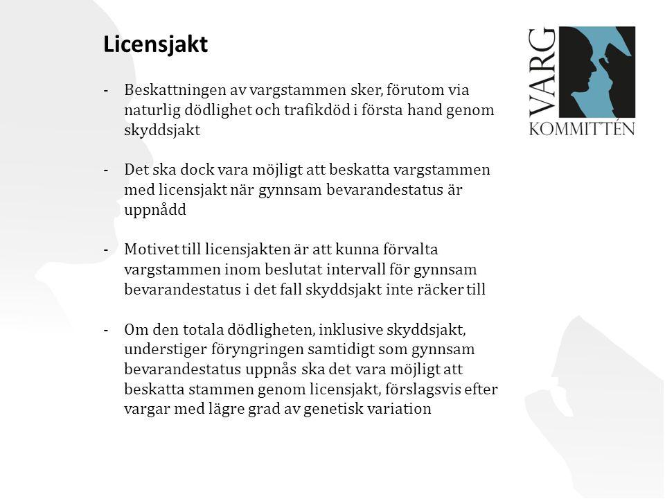 Licensjakt Beskattningen av vargstammen sker, förutom via naturlig dödlighet och trafikdöd i första hand genom skyddsjakt.