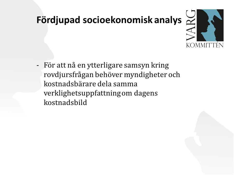 Fördjupad socioekonomisk analys
